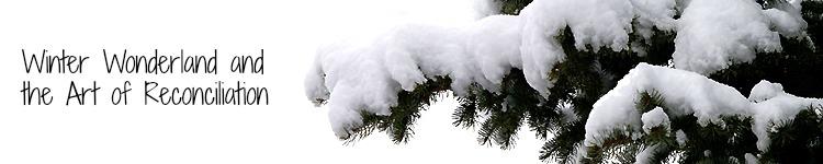 snowcover2